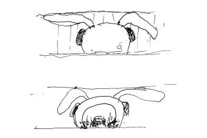 Rabbit-Sketch-2-copy